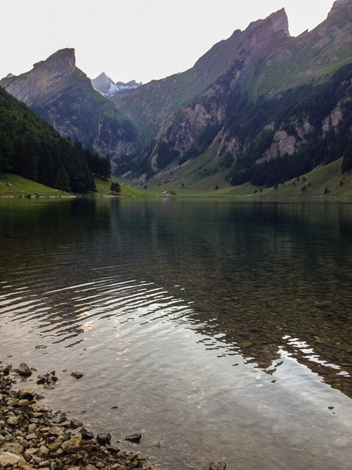 SFTseealpsee (1 of 2).jpg