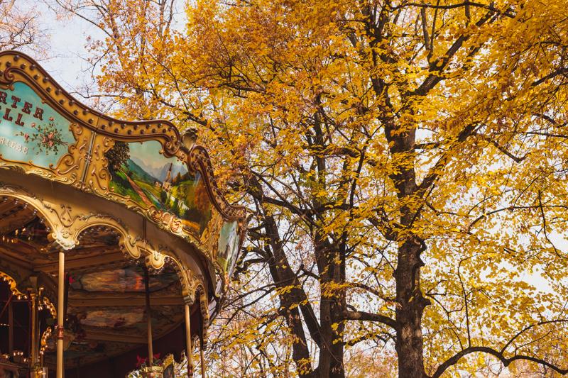 Carousel on Petersplatz