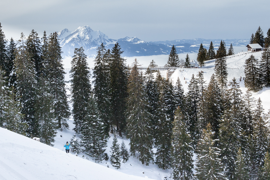 Winter hiking on the Rigi, a great alternative to Skiing.