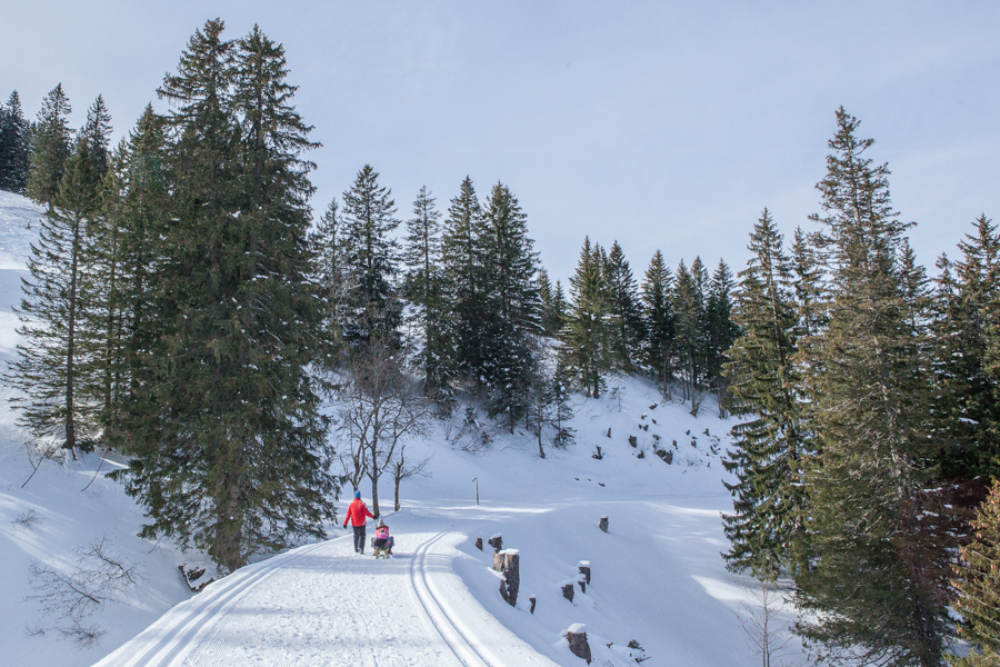 Sledding on the Rigi is a great alternative to skiing in Switzerland