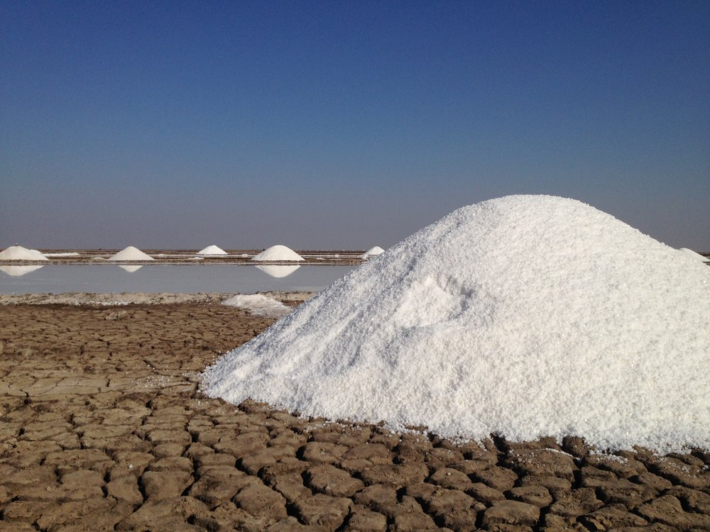 25% of India's salt is produced in the Little Rann