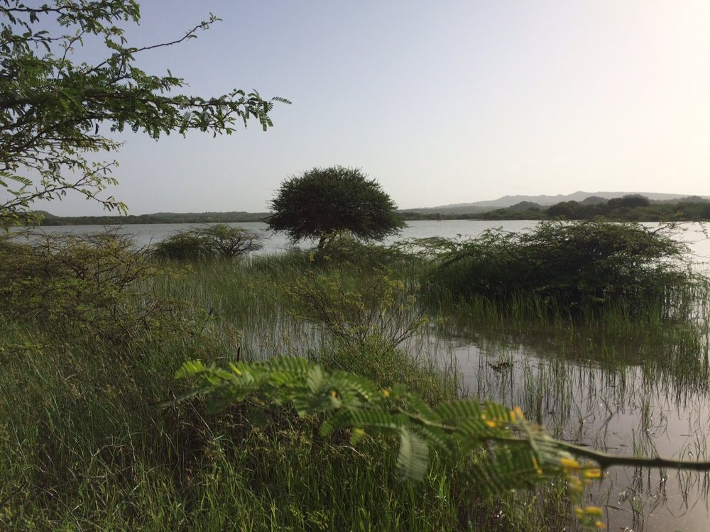 Pragsar lake lies at the heart of Chadva Rakhaal