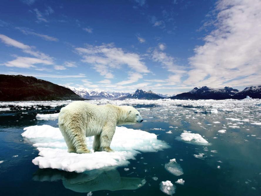 Climate-chang-e.jpg