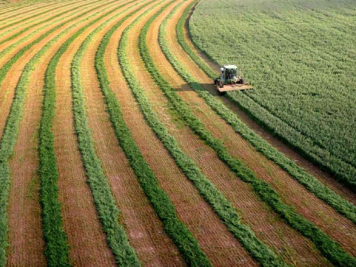 agriculture-in-israel-2-728.jpg