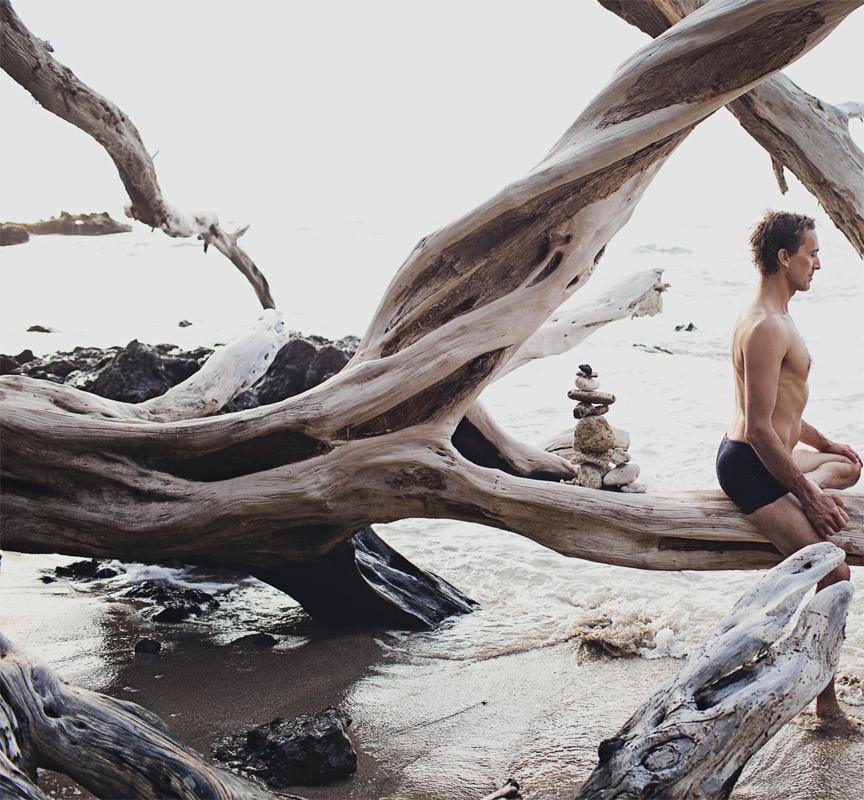 karl-straub-driftwood.jpg