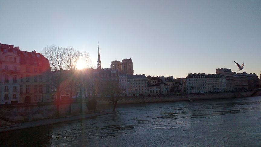ile-de-la-cite-magic-hour-2.jpg