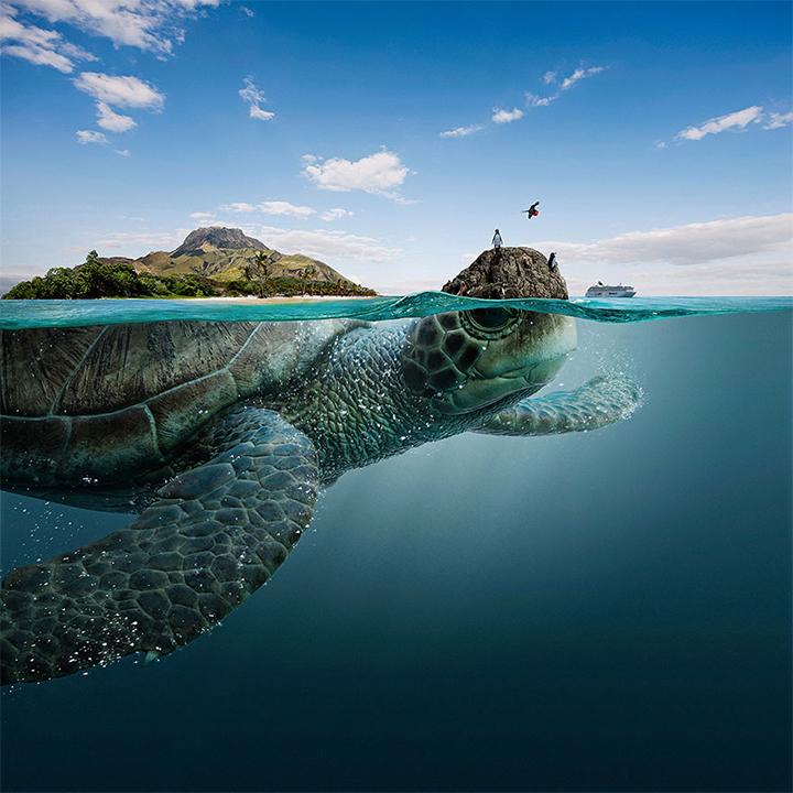 Photo: The SeaChange Agency