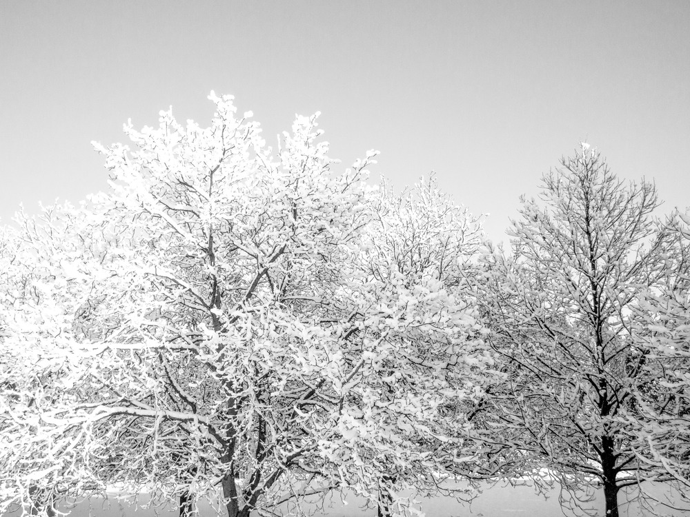 Winter 2012_2013-085875.jpg