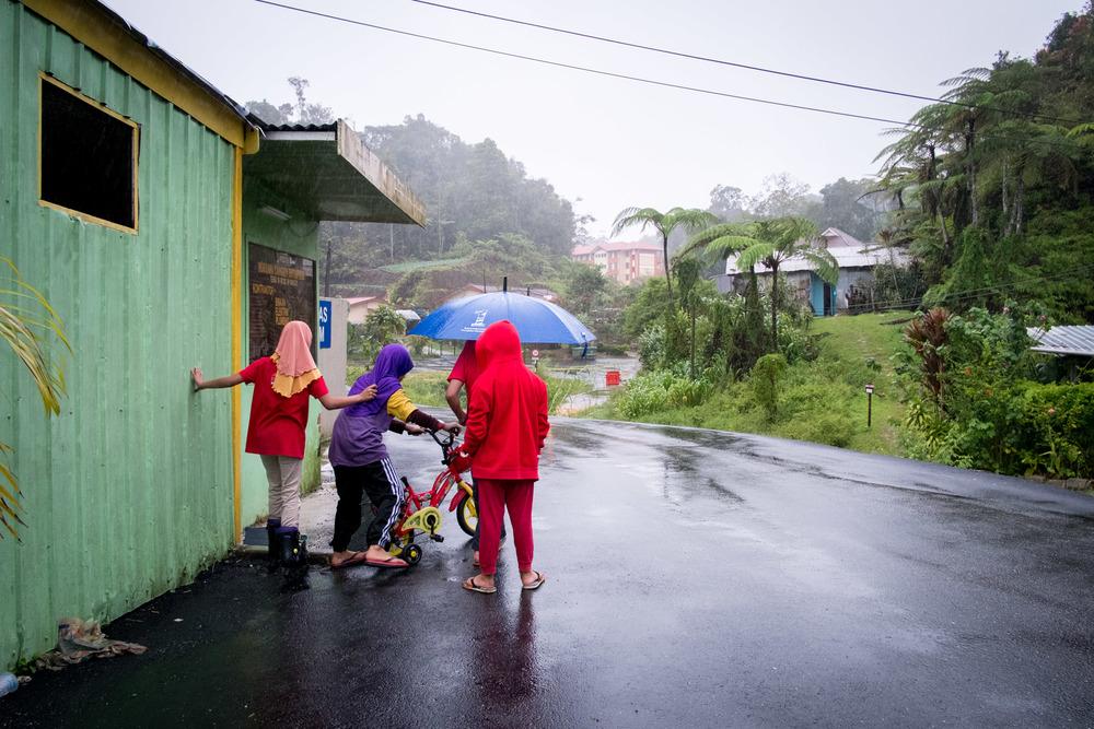 Zomervakantie 2013 - Maleisie-7106.jpg