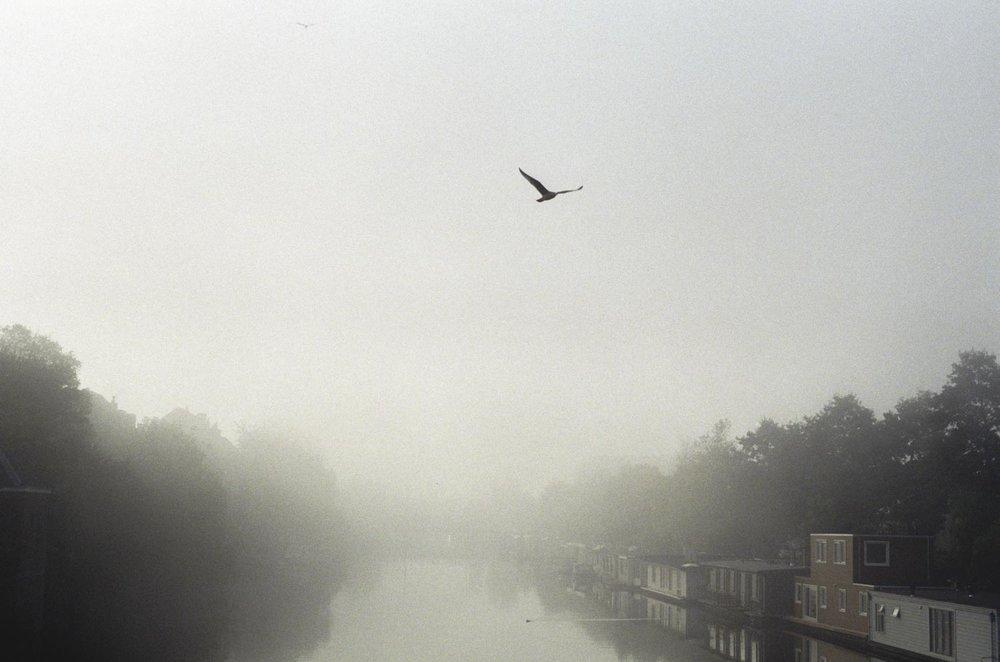 Annet - Amsterdam Oktober 2015-12-3.jpg