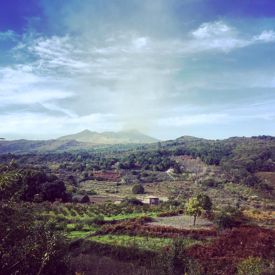 Tenuta Monte Gorna (2).jpg