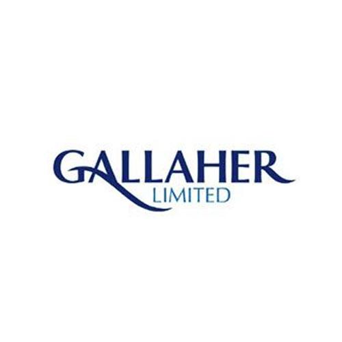 Gallaher.jpg