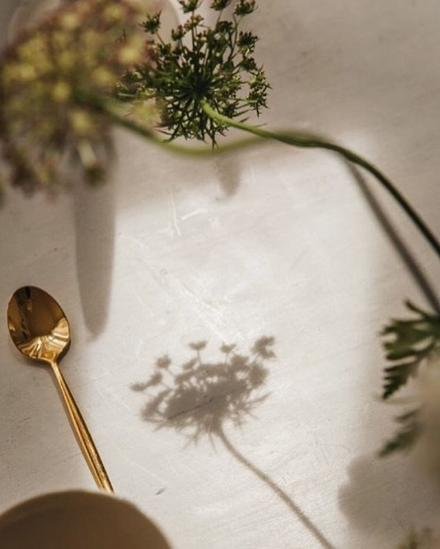 Very excited for today's ikebana inspired wedding with the dream team @hilde.stories and @lucie_bennett 📷 by @cgoedke  #stilllifeflowers #@hildestories #ikebana #londonwedding #weddingflowers #setup