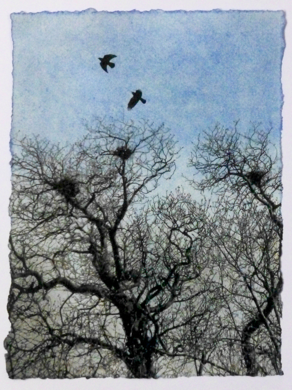 Artist: Luella Martin  Title: April  Medium: Oil paint and solar etching  Size: 25 x 19 cm  Price: £240 fr, £160 u/f