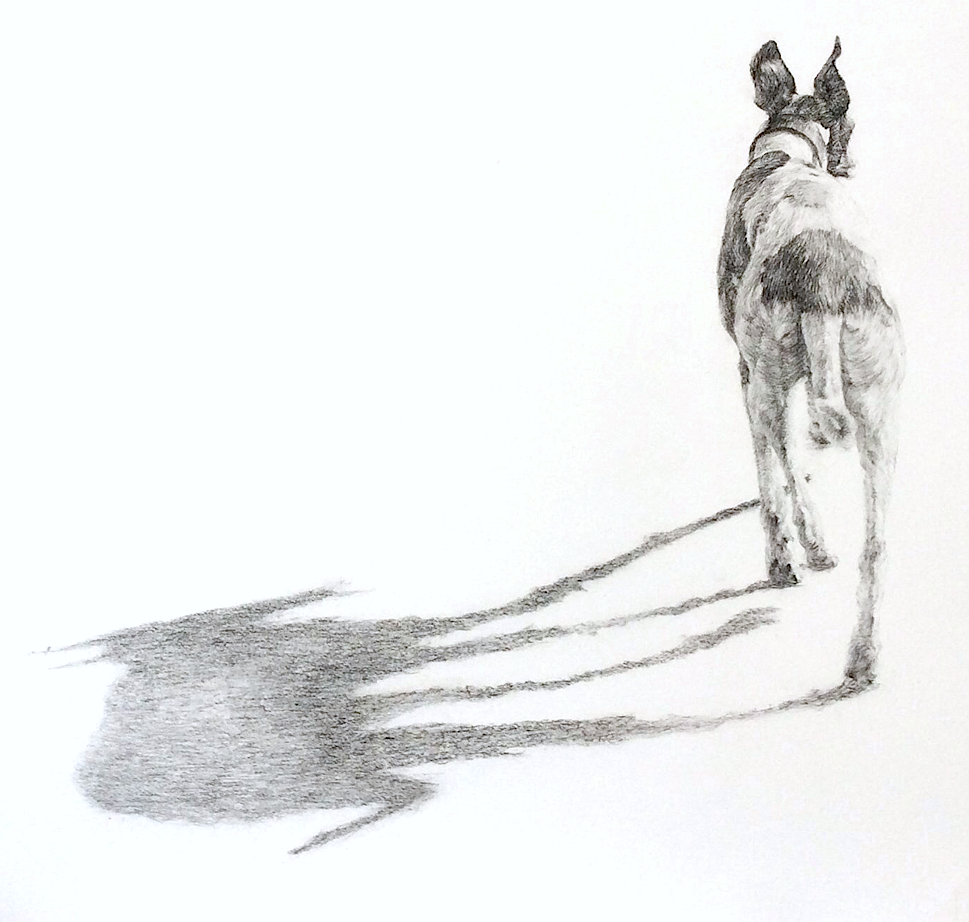Artist: Faye Anderson  Title: Sunny Day  Medium: Charcoal  Size: 56 x 78 cm  Price: £1250