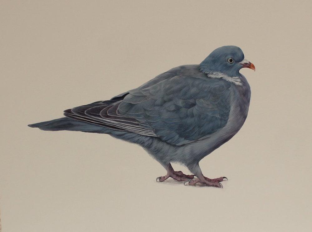 Artist: Faye Anderson  Title: Winston  Medium: Egg Tempura  Size: 28 x 36 cm  Price: £1450
