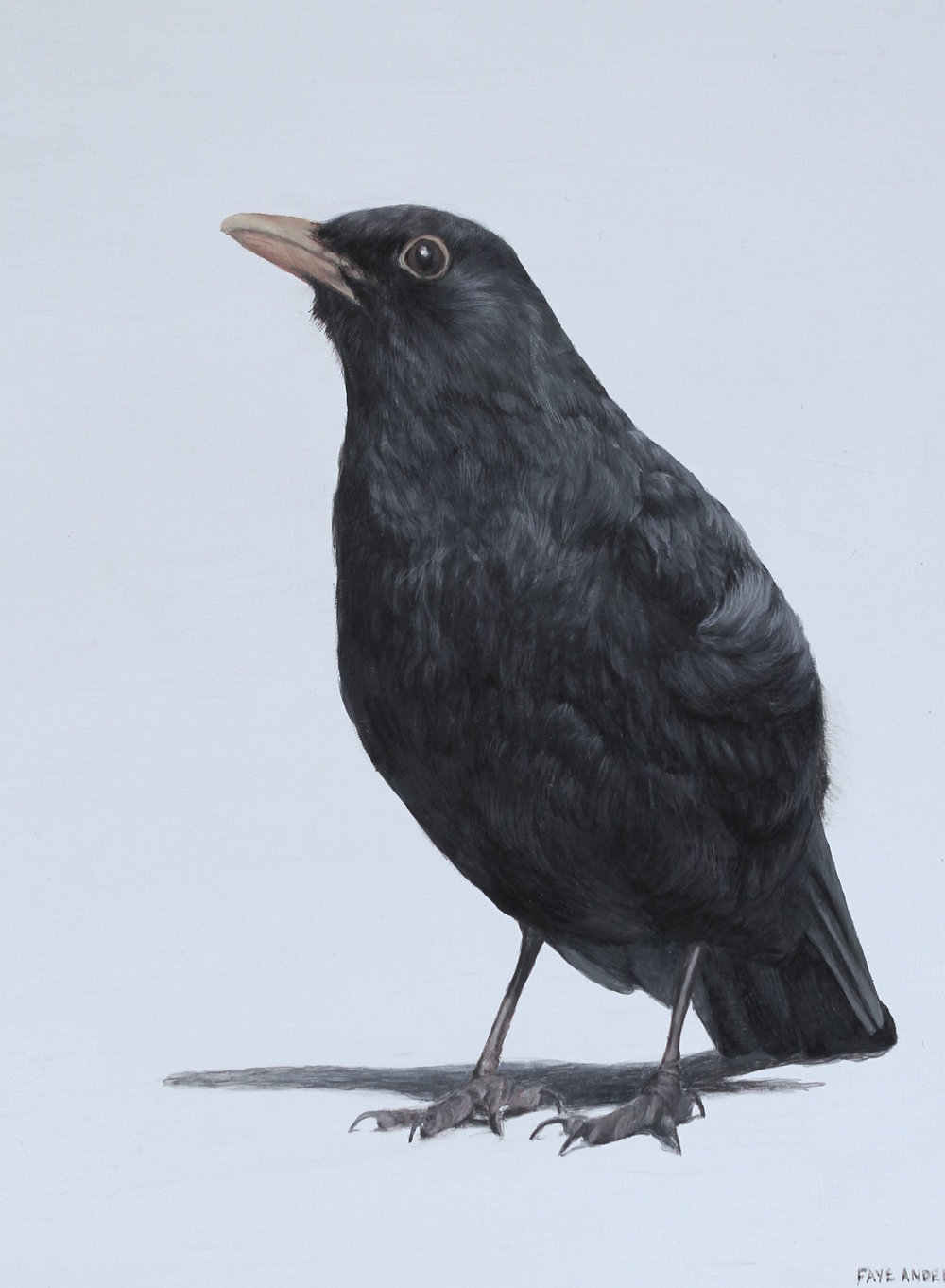 Title: Blackbird II Size: 20 x 15 cm Medium: Egg Tempera SOLD