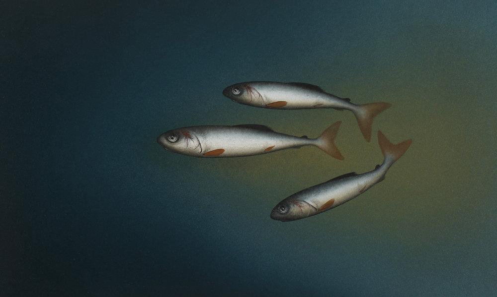 Title: Dark Water Size: 22 x 37 cm Medium: Oil on panel