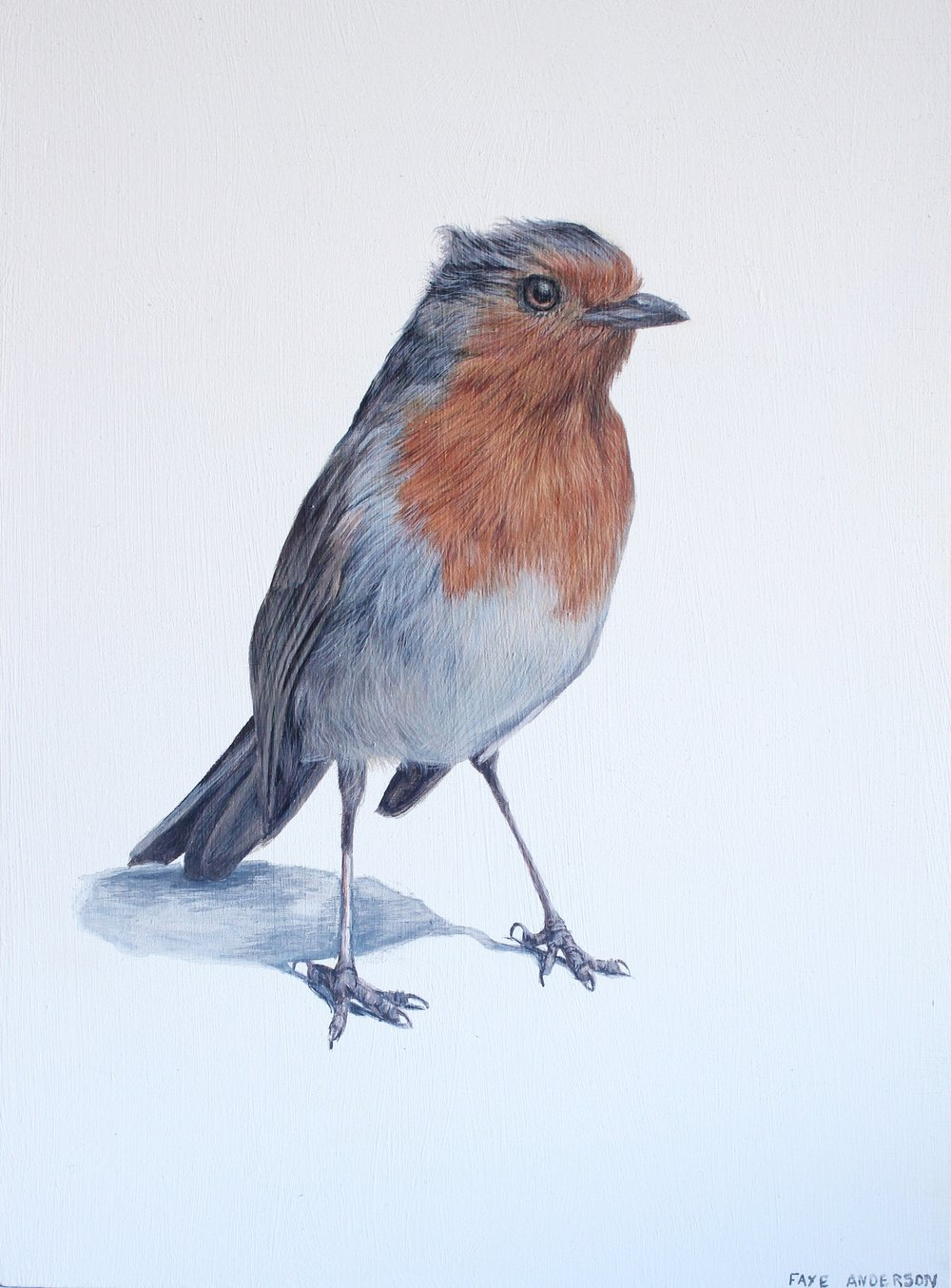 Artist: Faye Anderson  Title: Spring Robin  Size: 20 x 15 cm  Medium: Egg Tempera  SOLD