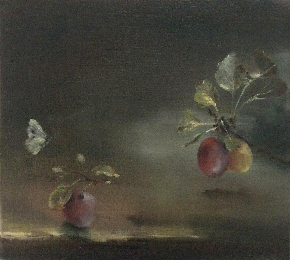 Artist: Linda Felcey  Title: Prunus  Size: 25 x 24 cm  Medium: Oil on linen  Price: £520   Buy Now