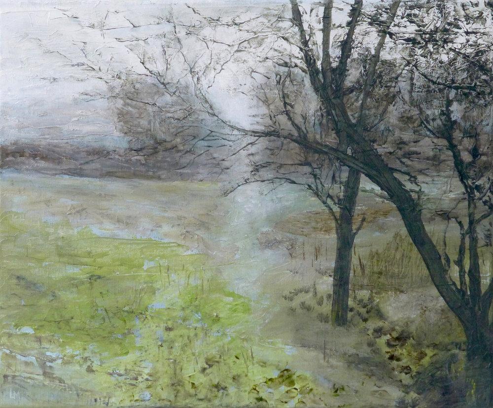 Artist: Luella Martin  Title: Path  Size: 38 x 46 cm  Medium: Oil on linen  Price: £950   Buy Now