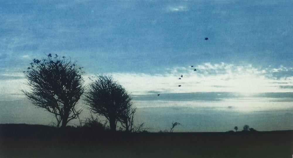 Title: Two Trees * Exclusive to Cameron Contemporary Art *  Size: 13.5 x 25.5 cm  Medium: Solar etching (edition of 20)  Price: £180 fr / £120 u/f   Buy Now
