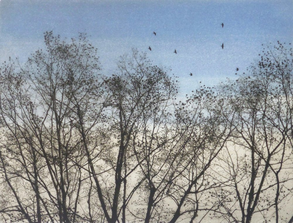 Title: In the Garden  Size: 27 x 36 cm  Medium: Solar etching and oil paint (edition of 30)  Price: £350 fr   Buy Now