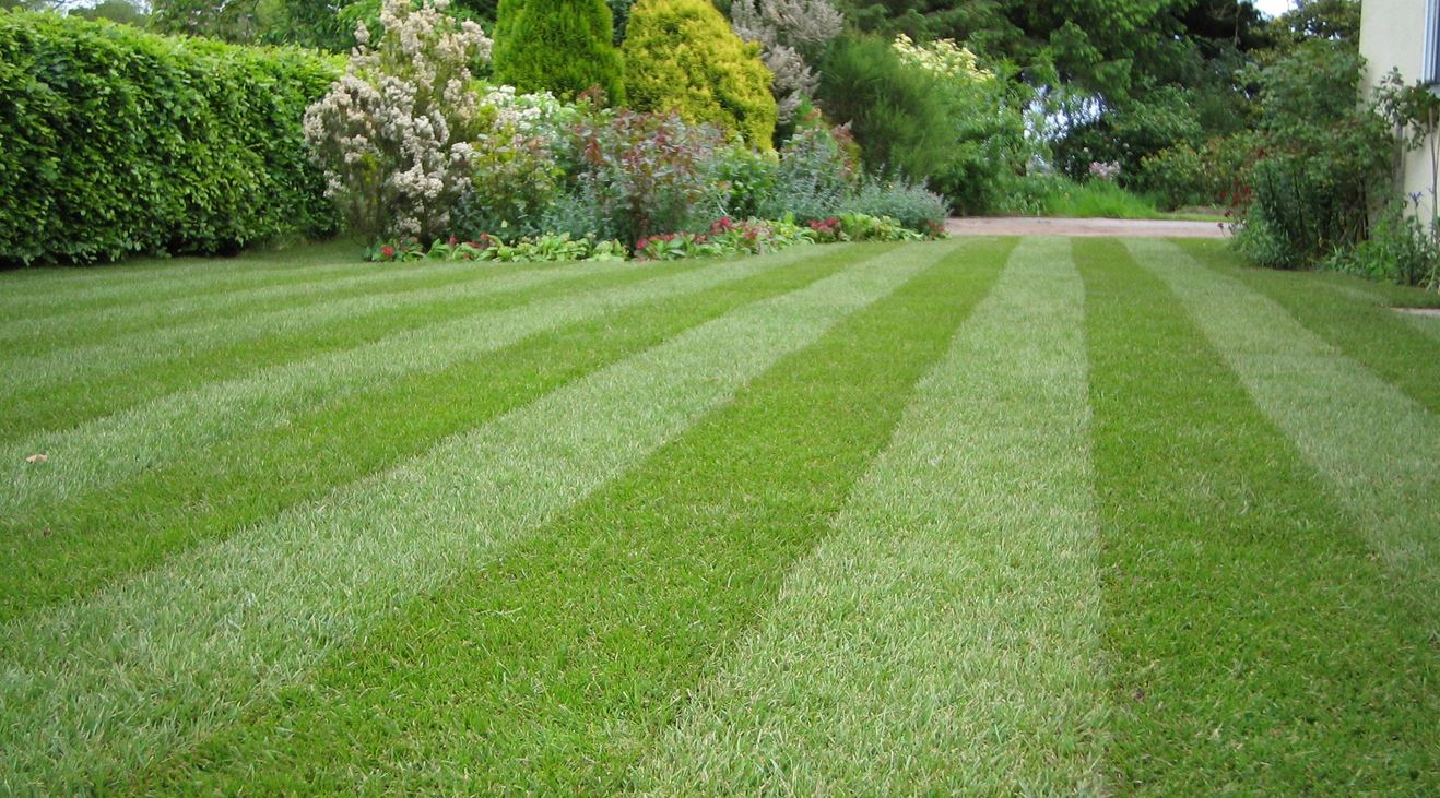 about us u2014 nc drainage yard and lawn drainage experts french