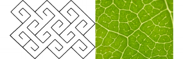 Left: Celtic Keys — Spiral Tile Pattern Right: Close-up of a Populus Leaf by Oak Ridge National Labor ow.ly/G56LX