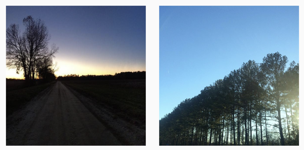 Image: Scribe's photographs taken during a very long road trip [ sunset 17:43 ; treeline 16:24 ]