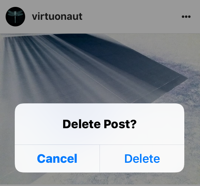 Image: the moment before Scribe deletes a PhotoSnap post 05 feb (44) 07:39
