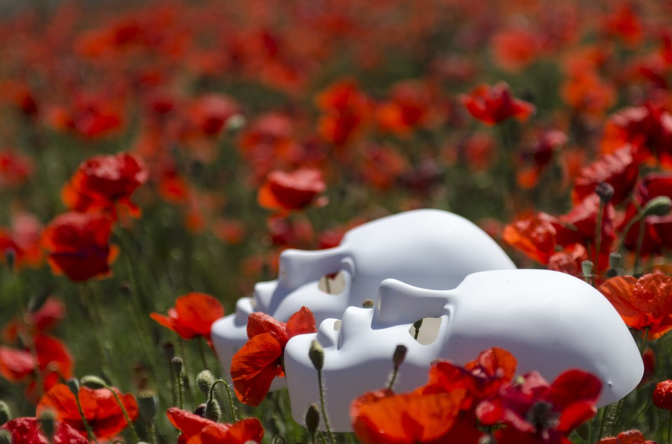 Two neutral masks lie in a field of red poppy flowers.