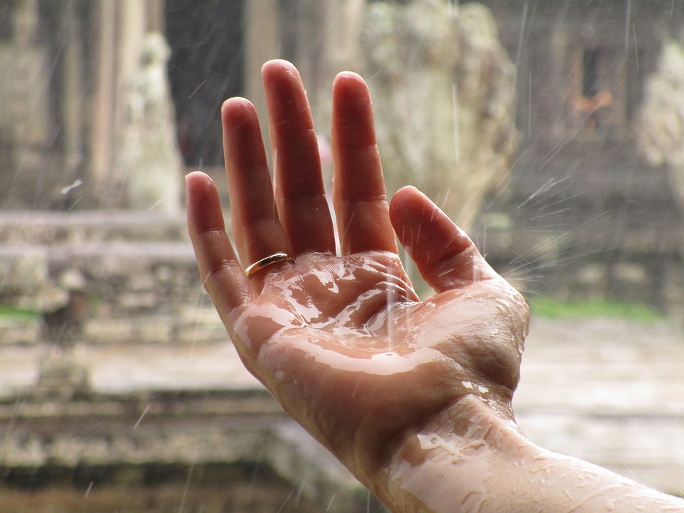 A Hand Softening into the Rain.