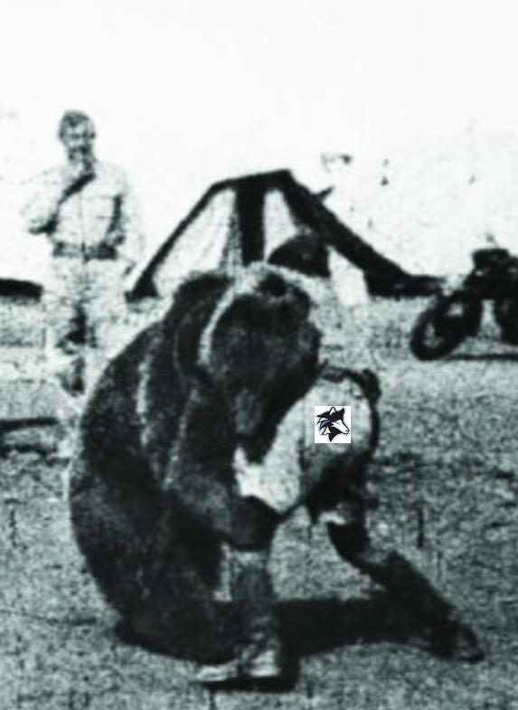 ICEWOLVES player Shadowz wrestling a Bear