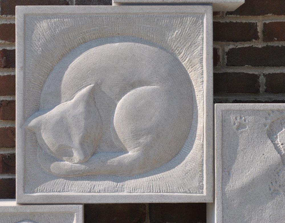 Dreams Pets 1920 3.JPG