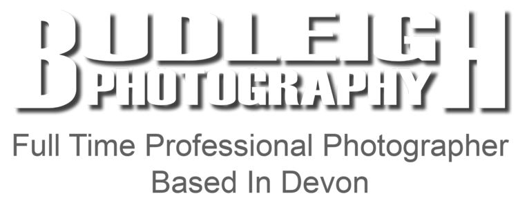 Full Time Professional Photographer Based In Devon