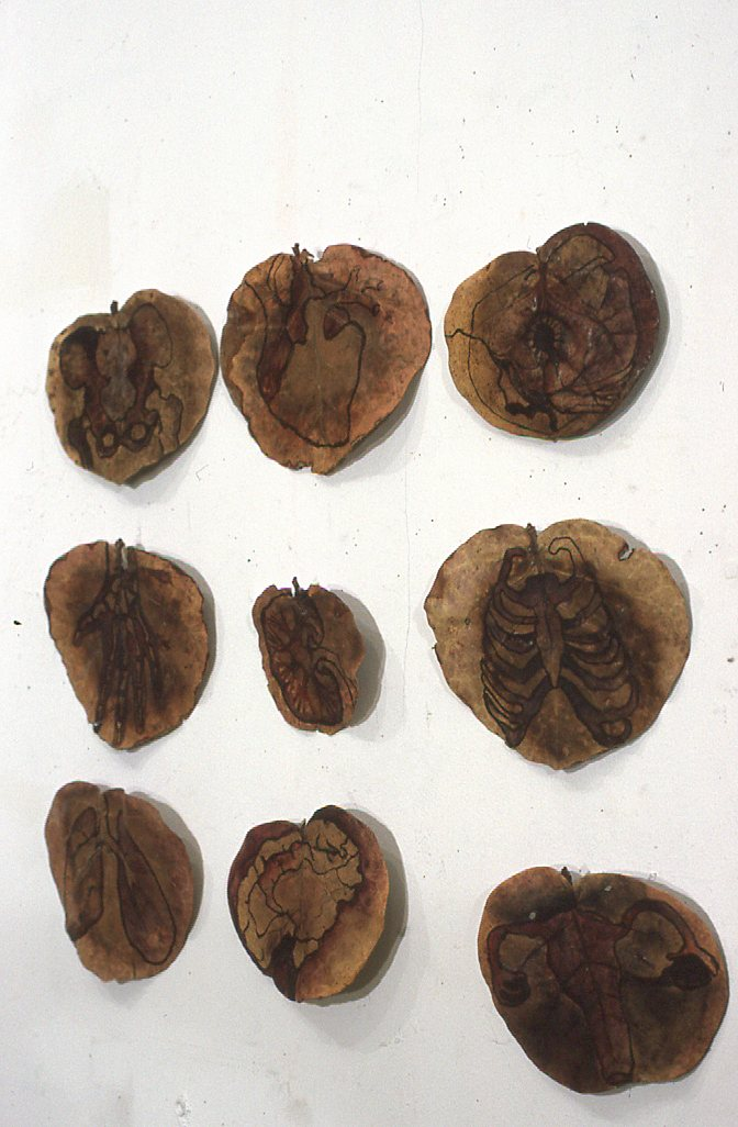 caspersen_leaf_paintings.jpg
