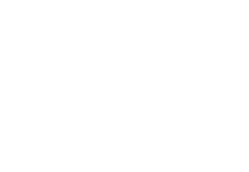 warrior-logo.png