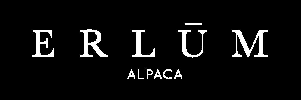 erlum-logo-white.png