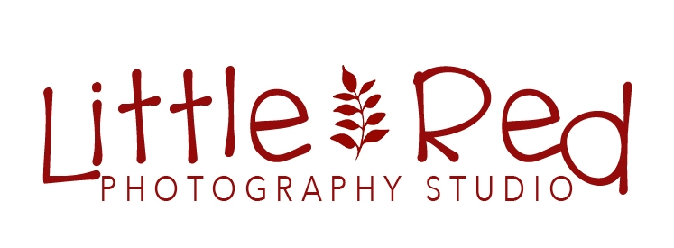 Little Red Photography Studio