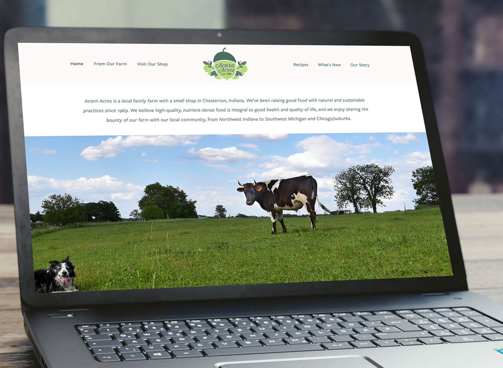 Acorn Acres Farm - Sustainable Farm WebsiteThis small sustainable farm website includes a news area for weekly updates, an email signup form, lots of photos, and seasonal order forms for pre-order items like turkey.