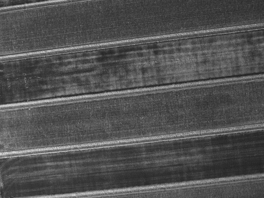 Azul (480 nm)