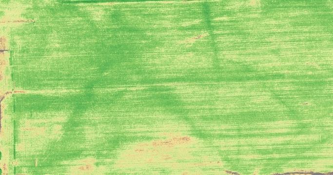 field01.jpg