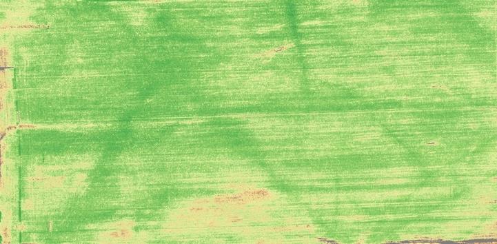 Imagen multiespectral de cultivo