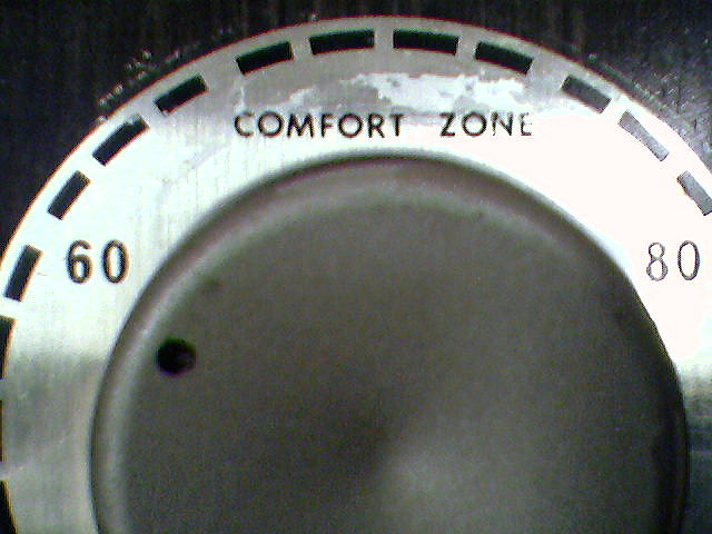 Your comfort zone is hurting you