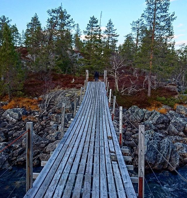 Faith becomes a bridge between where I am and where I want to go 💚 #iamnordic #autumnleaves #autumn #fall #autumncolors #norway #norge #visitnorway #natur #landscape #bestofnorway #hiking #utpåtur #nordnorge #utsikt #bridge #nature #beautiful #river #old #architecture #instagood #forest #trees #adventure #naturelovers #waterfall #outdoors #woods #likeforfollow