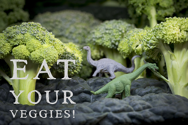 tiny-dinosaurs-eat-your-veggies-melanie-mahonen-photography