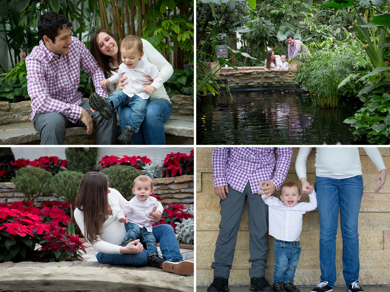 01-como-park-conservatory-st-paul-minnesota-family-maternity-winter-session-eighteen-months-melanie-mahonen-photography