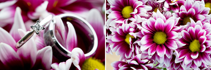 01-summer-backyard-wedding-minnesota-pink-white-daisies-ring-detail-shot-melanie-mahonen-photography