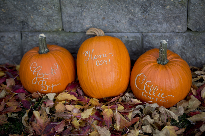 03-etched-pumpkins-fall-homegrown-melanie-mahonen-photography